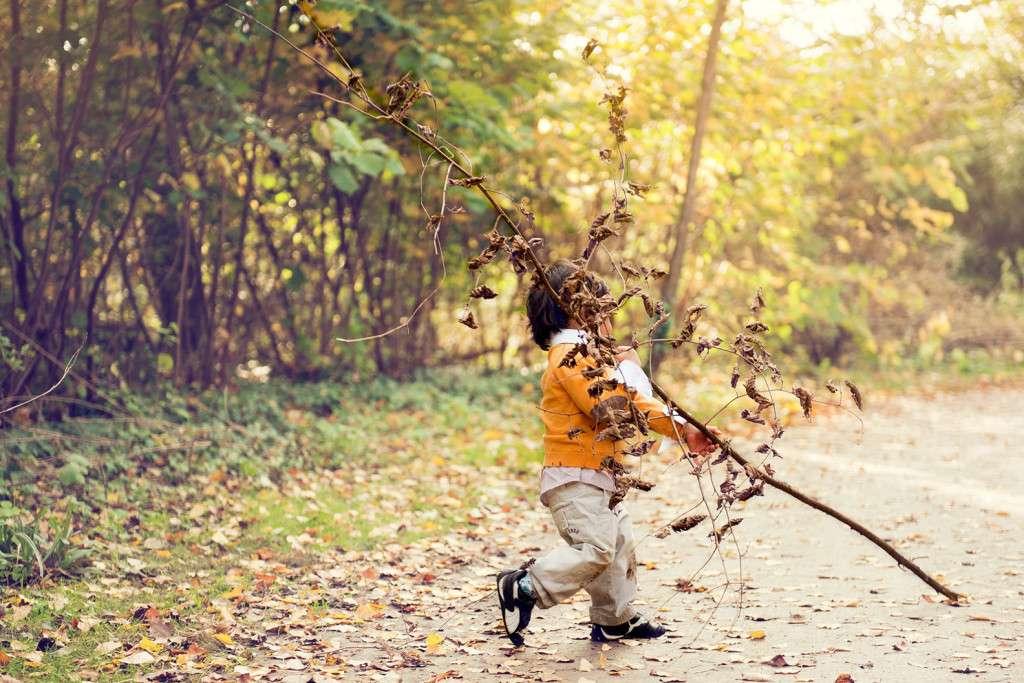 childfirewood